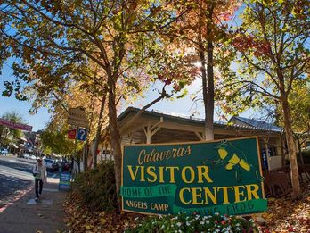 Calaveras Visitors Bureau ROI Study